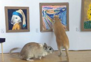 This Couple Made a Miniature Art Museum for their Gerbils and it's the Best