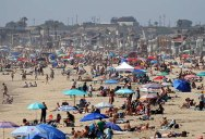 This Photo of Newport Beach from this Past Weekend is Just Wow