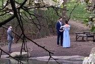 Guy Stumbles Across a Wedding While on a Walk Through Central Park
