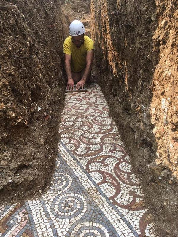 3rd century roman mosaic discovered under vineyard in italy 1 Stunning 3rd Century Roman Mosaic Discovered Under Vineyard in Italy