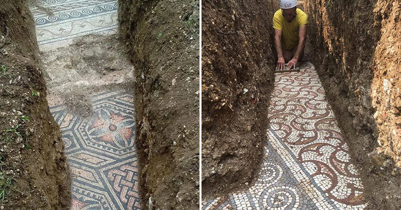 Stunning 3rd Century Roman Mosaic Discovered Under Vineyard in Italy
