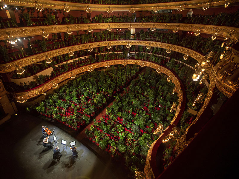 barcelona opera reopens to a packed crowd of house plants 1 Barcelona Opera Reopens to a Packed Crowd of House Plants