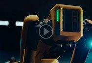 This Commercial for the Impending Robot Apocalypse is Kinda Cute