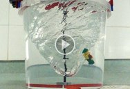 Creating a Giant Water Vortex with Lego Motors