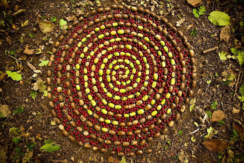 earth art by james brunt 2020 10 James Brunt Uses Fall Foliage to Create Temporary Works of Earth Art