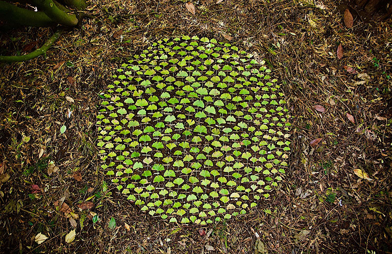 earth art by james brunt 2020 15 James Brunt Uses Fall Foliage to Create Temporary Works of Earth Art