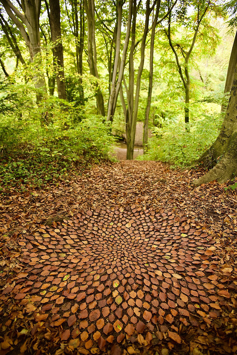 earth art by james brunt 2020 17 James Brunt Uses Fall Foliage to Create Temporary Works of Earth Art
