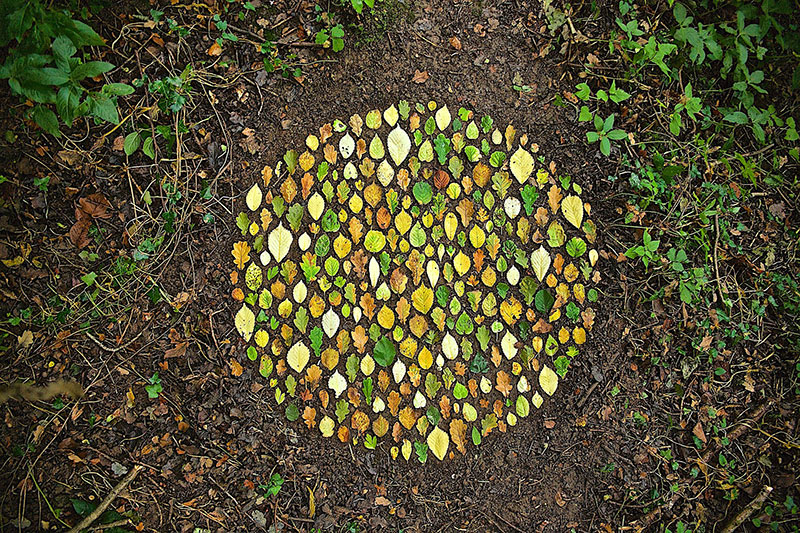 earth art by james brunt 2020 2 James Brunt Uses Fall Foliage to Create Temporary Works of Earth Art
