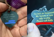 Dog Tags are Always Useful and Sometimes Hilarious (13 Pics)