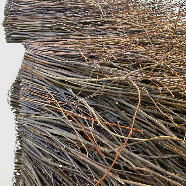 olga ziemska bamboo willow branch art 3 Stillness in Motion by Olga Ziemska