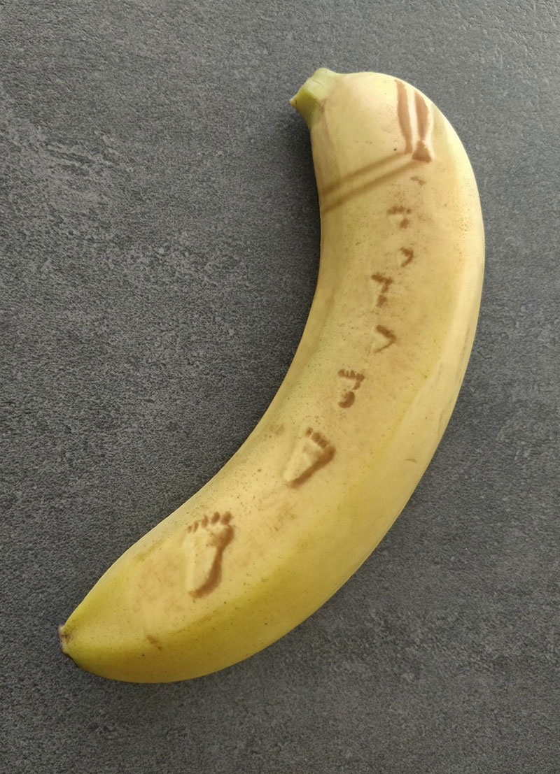 bruised banana art by anna chojnicka 10 Amazing Banana Art Made by Poking and Bruising the Skin, No Ink is Used