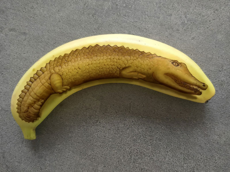 bruised banana art by anna chojnicka 30 Amazing Banana Art Made by Poking and Bruising the Skin, No Ink is Used
