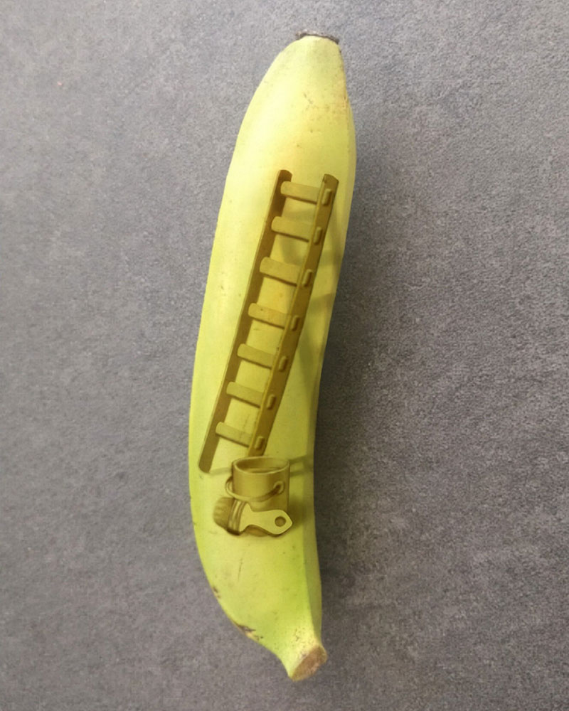 bruised banana art by anna chojnicka 31 Amazing Banana Art Made by Poking and Bruising the Skin, No Ink is Used