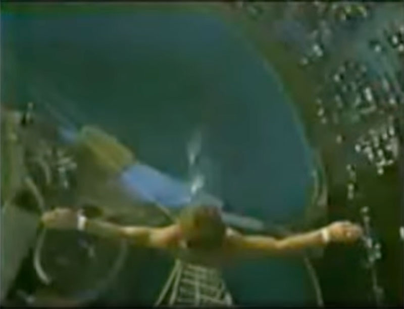 1983 world record high dive competition seaworld 1 The 1983 World Record High Dive Competition was Absolutely Mad