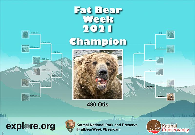 fat bear week 2021 winner otis 5 Congratulations to Otis, Your 2021 Fat Bear Week Champion